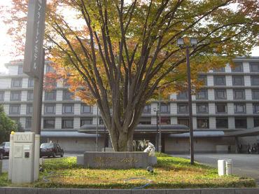 Kyotobrightonhotel01