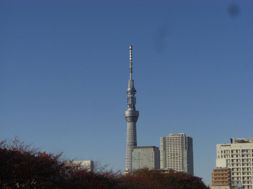 Skytree01