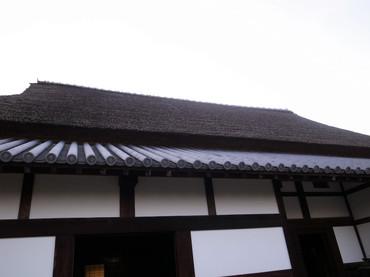 Sawaikejuutaku06